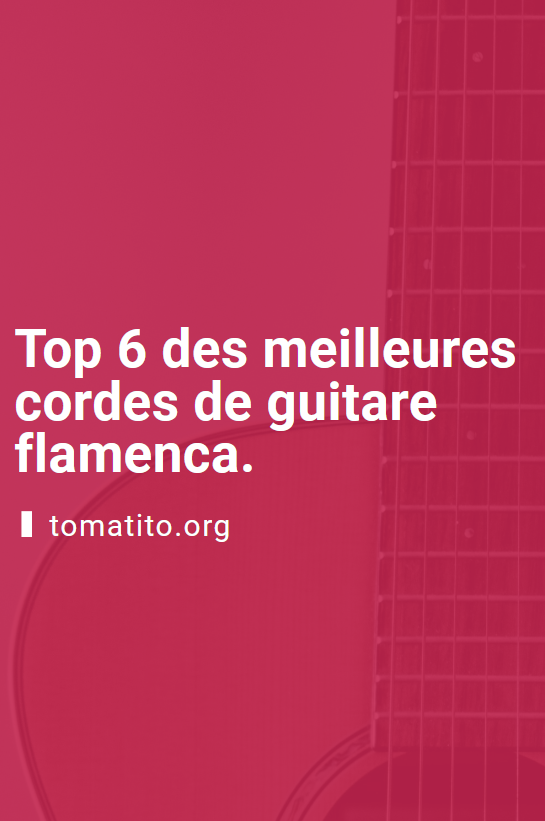 top 6 des meilleures cordes de guitare flamenco pinterest